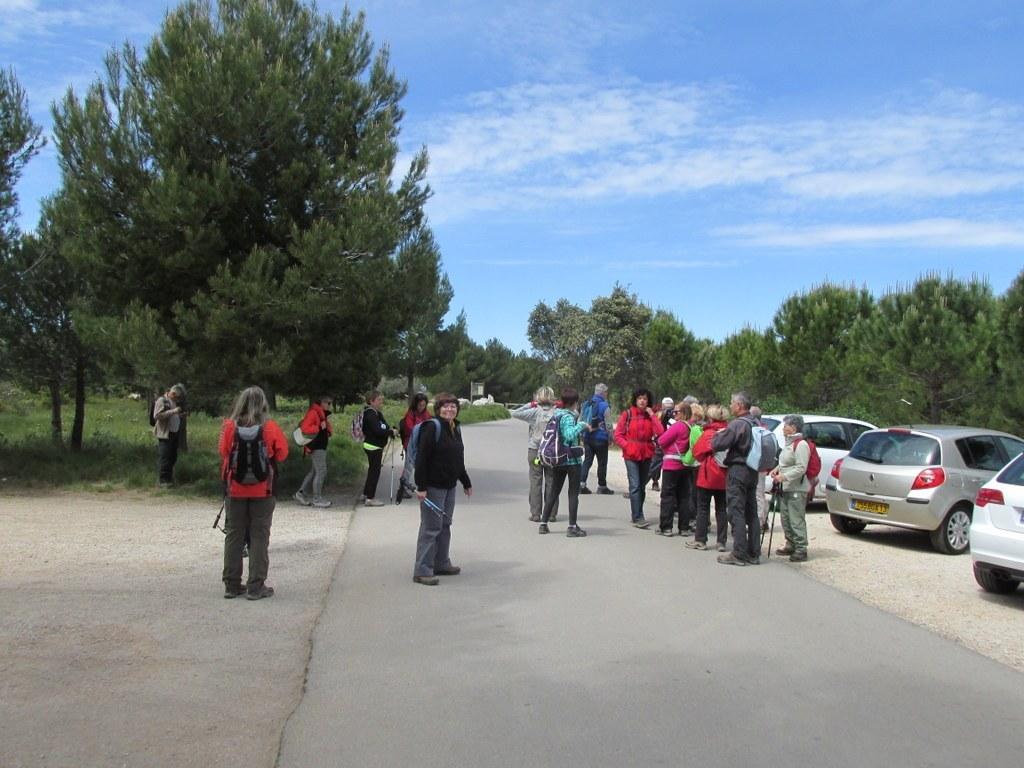 Saint-Mitre-les-Remparts - Etang du Pourra - Jeudi 28 avril 2016 Oyyyn5