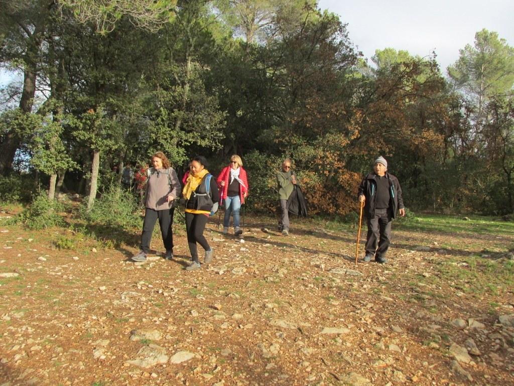 Roques Hautes - Barrage de Bimont -jeudi 10 novembre 2016 YgnWQl