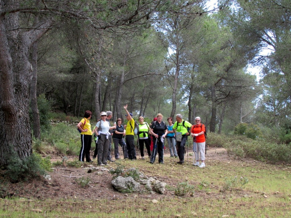"Martigues "" Parc de Figuerolles "" Jeudi 12 mai 2016 Njp4Ka"