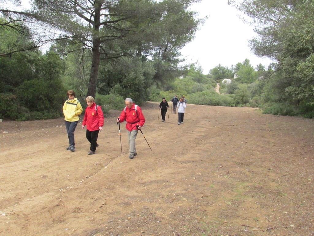 Septêmes les vallons - Vallon du Maire -Jeudi 28 janvier 2016 RARppx