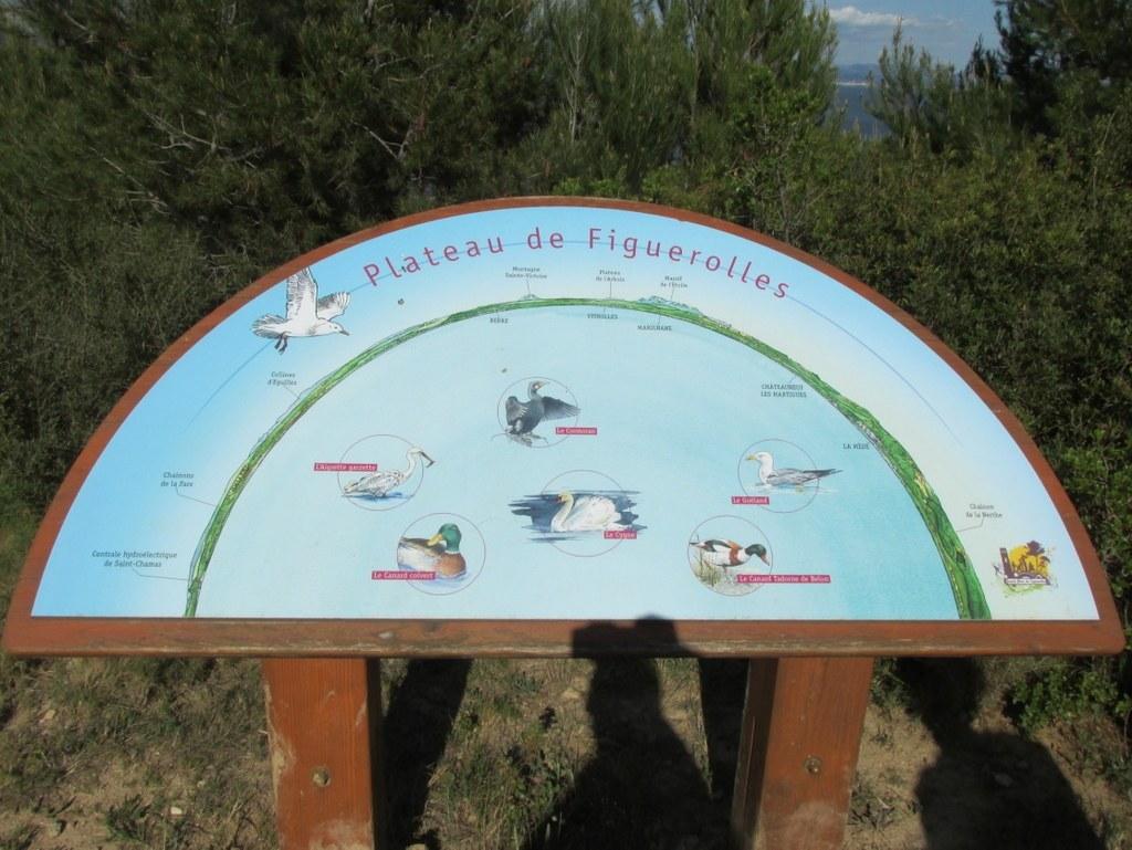 """Martigues """" Parc de Figuerolles """" Jeudi 12 mai 2016 Uoireo"""