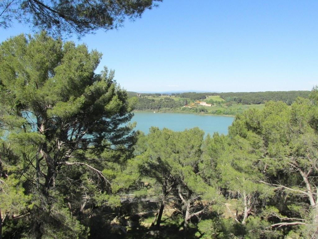 Saint-Mitre-les-Remparts - Etang du Pourra - Jeudi 28 avril 2016 AzRQsy