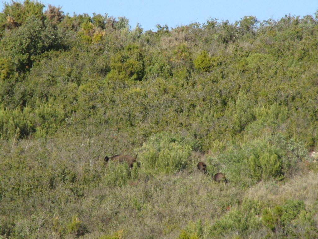 La Mérindole - Plateau de L'Arbois - Jeudi 8 Février 2018 Lr9p3a