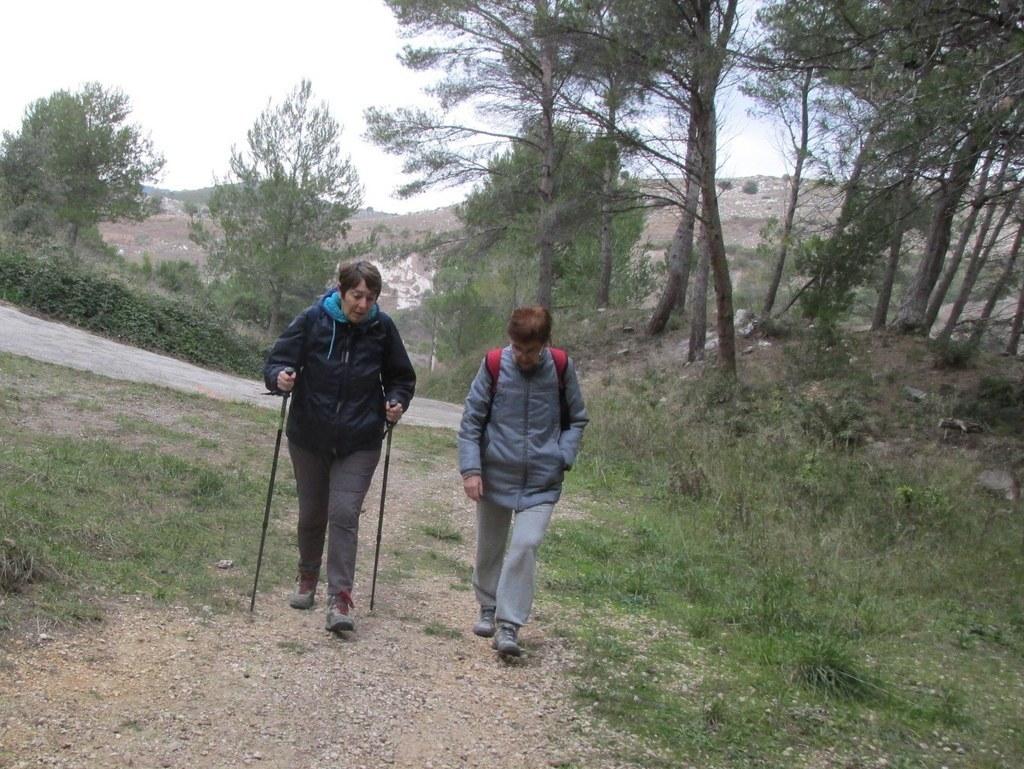 Septêmes les vallons - Vallon du Maire -Jeudi 28 janvier 2016 MzRPgZ