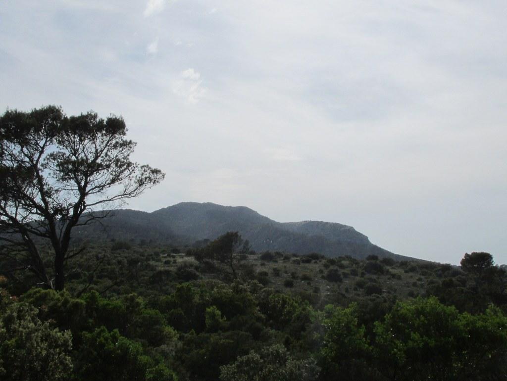Vauvenargues - Col des Portes - Jeudi 26 mai 2016 StU5B7