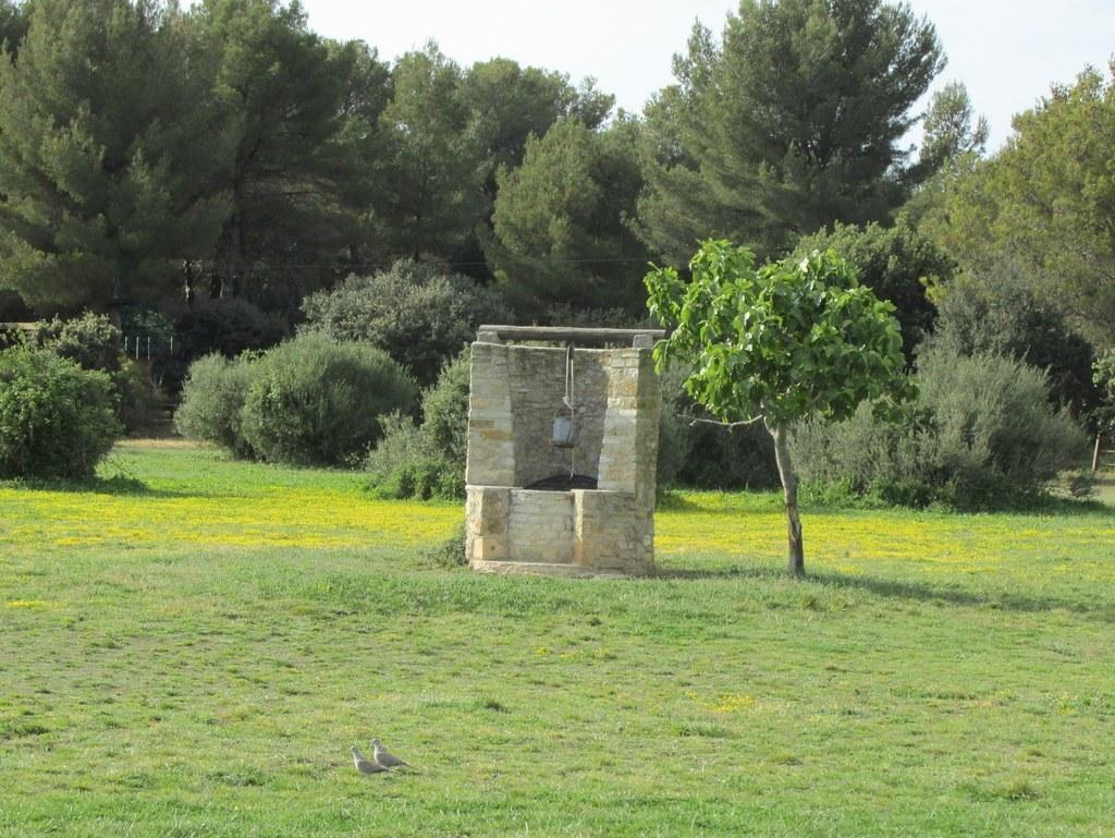 "Martigues "" Parc de Figuerolles "" Jeudi 12 mai 2016 CAJ8ae"