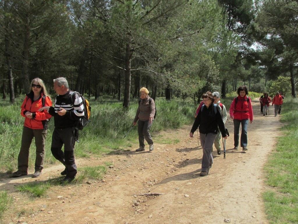Saint-Mitre-les-Remparts - Etang du Pourra - Jeudi 28 avril 2016 KIJk3m