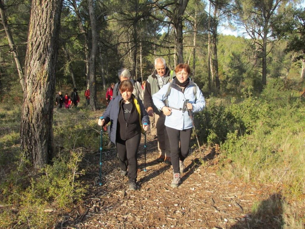 Gardanne -Jeudi 08 Décembre 2016 FRNmnp