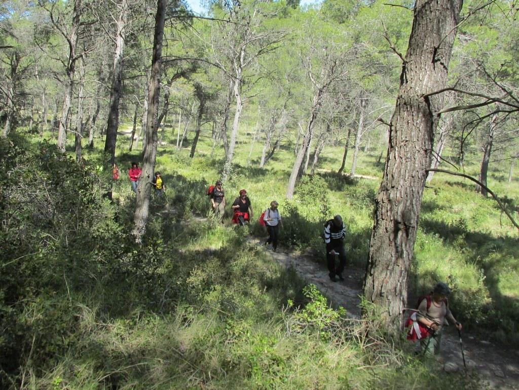 Saint-Mitre-les-Remparts - Etang du Pourra - Jeudi 28 avril 2016 Q0kAyT