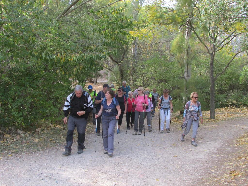 St Antonin - Jeudi 19 octobre 2017 R4FIjR