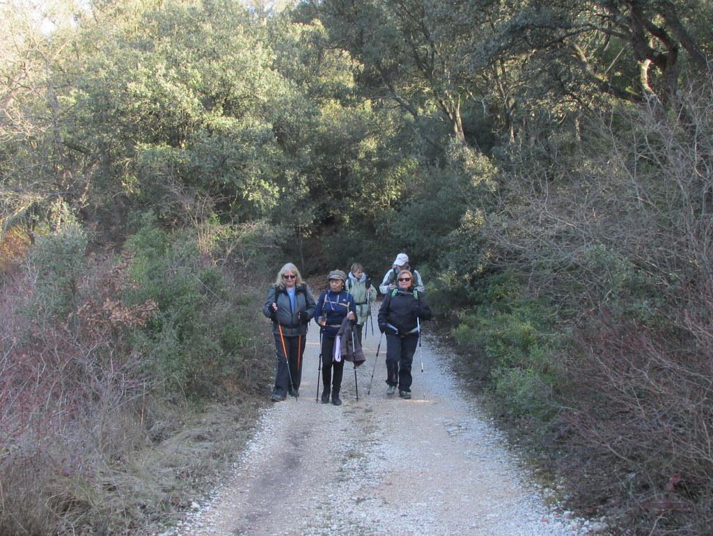 La Mérindole - Plateau de L'Arbois - Jeudi 8 Février 2018 2iHAH4