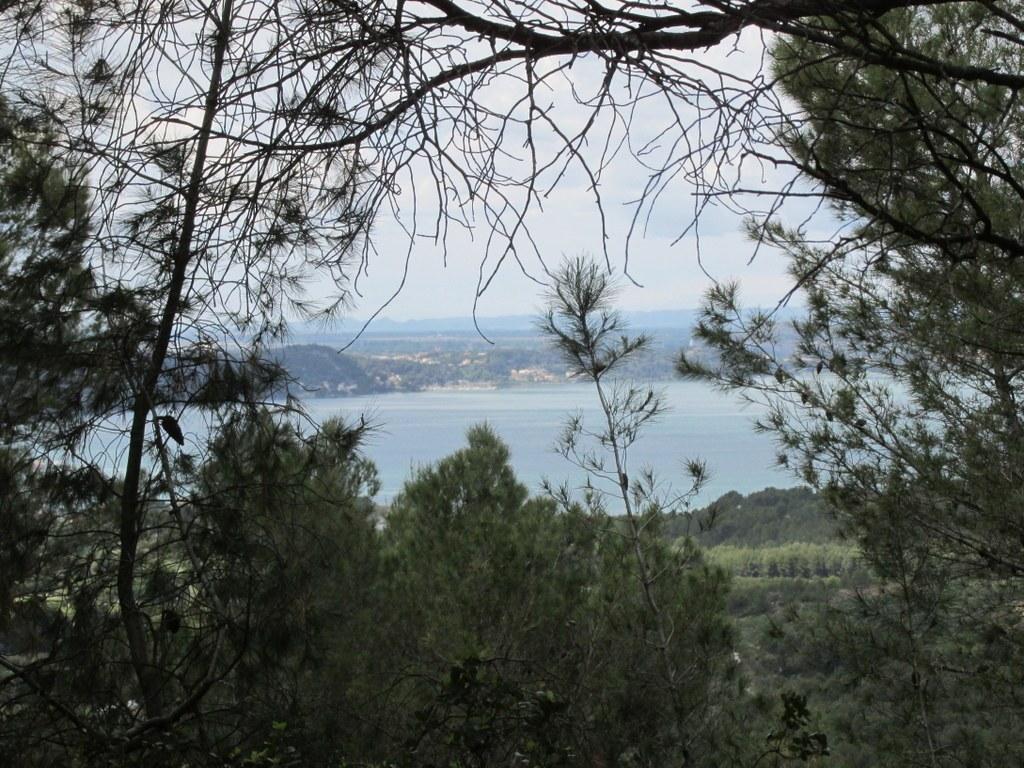 "Martigues "" Parc de Figuerolles "" Jeudi 12 mai 2016 45l6Ui"