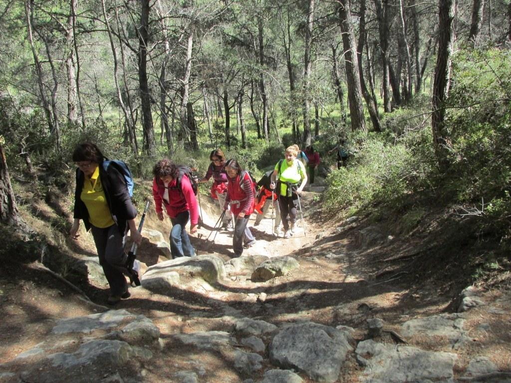 Saint-Mitre-les-Remparts - Etang du Pourra - Jeudi 28 avril 2016 XwzUcc