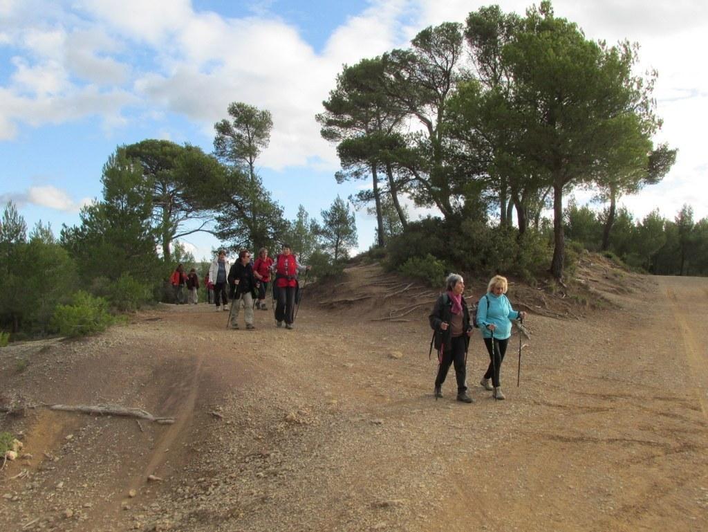 Roques Hautes - Barrage de Bimont -jeudi 10 novembre 2016 LD3405