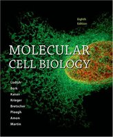 Molecular Cell Biology 8th Edition BU1mdh