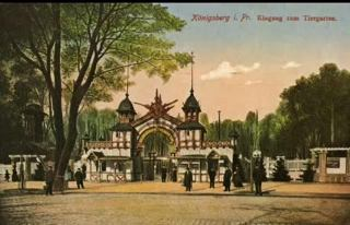 Königsberg, belle ville ancienne Jb8wks