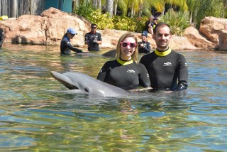 TR photo 20 février au 5 mars 2016 WDW/Universal/Discovery Cove/Kennedy Space Centre - Page 2 PdoJqT