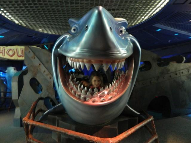 DisneyWorld et Road trip en Floride du 15 au 28 octobre 2016  CNCg3j