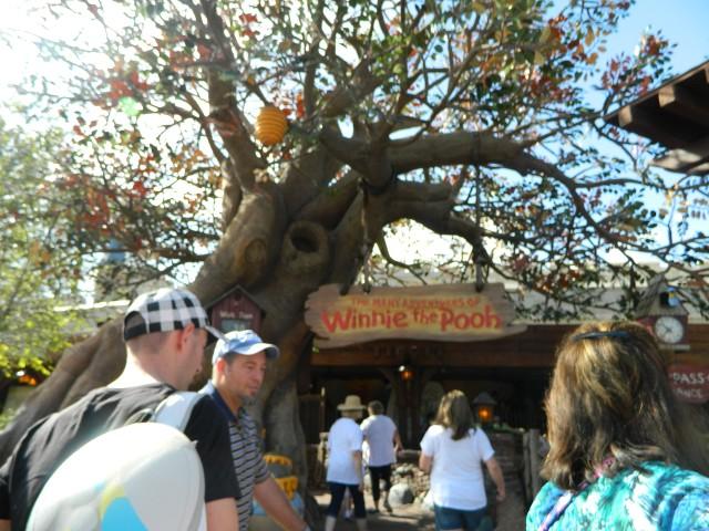 DisneyWorld et Road trip en Floride du 15 au 28 octobre 2016  W8c779