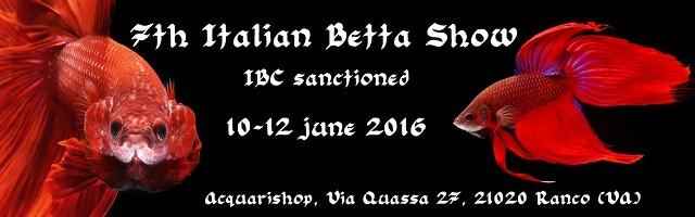 7th Italian Betta Show - 10-12 june 2016 - Ranco (VA) IBC FUVJXZ