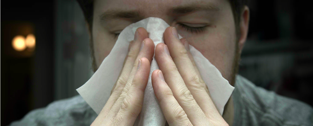Scientists Use Nanoparticles to Create a 'Universal Treatment' for Allergies 2al6Kx