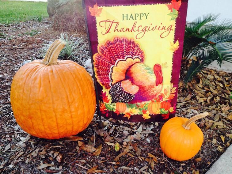 Happy Thanksgiving! OsvLfv