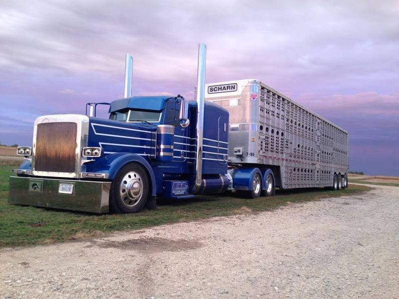 Zolis camions  9lyh