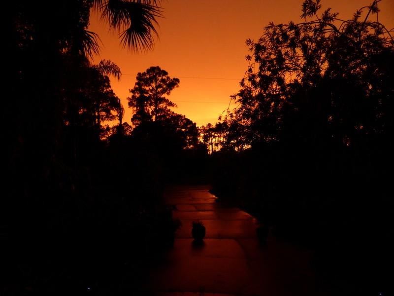 ... la Floride ... Fhr7