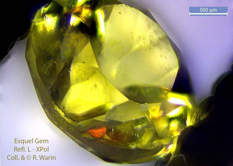 Une gemme d'Esquel XLyFRD