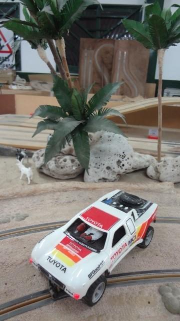 rally - Rally del Vicente ( Nario )..! Un Exito Coyoteril a full.! / W.! S4lc