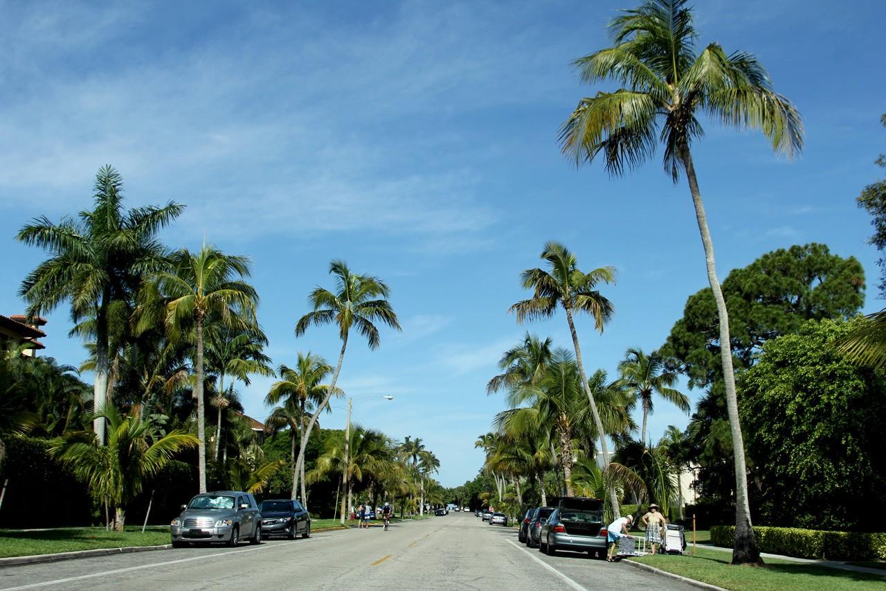 Petite ballade en Floride  IZ69AK