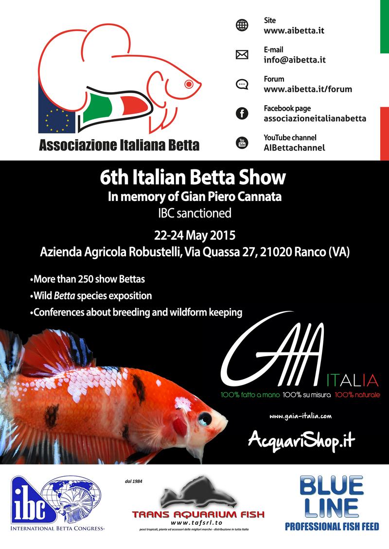 6th Italian Betta Show - 22-24 may 2015 Ranco (VA) - IBC SPP8DF