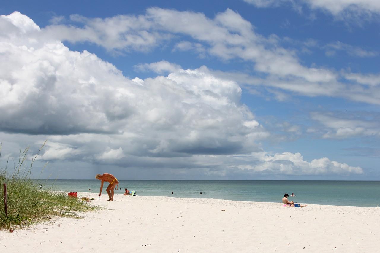 Petite ballade en Floride  TrhE1C