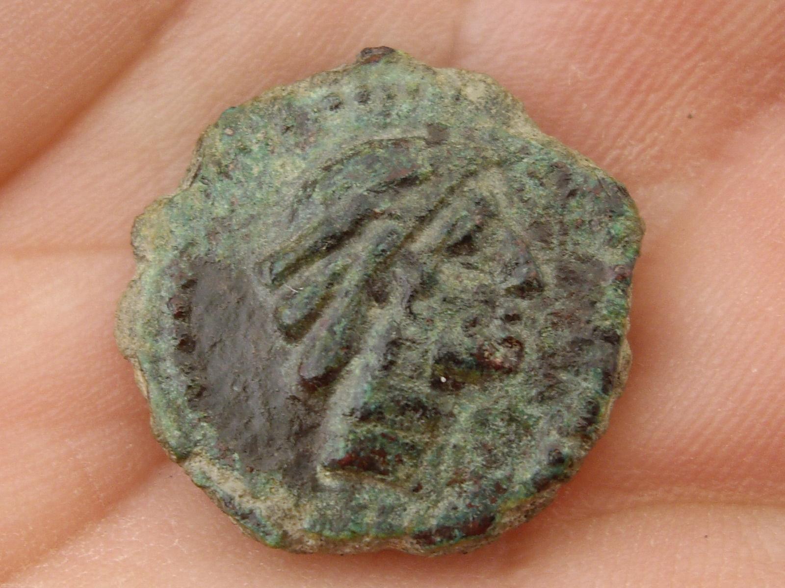 Semis de Ilipa Magna Cce2e3