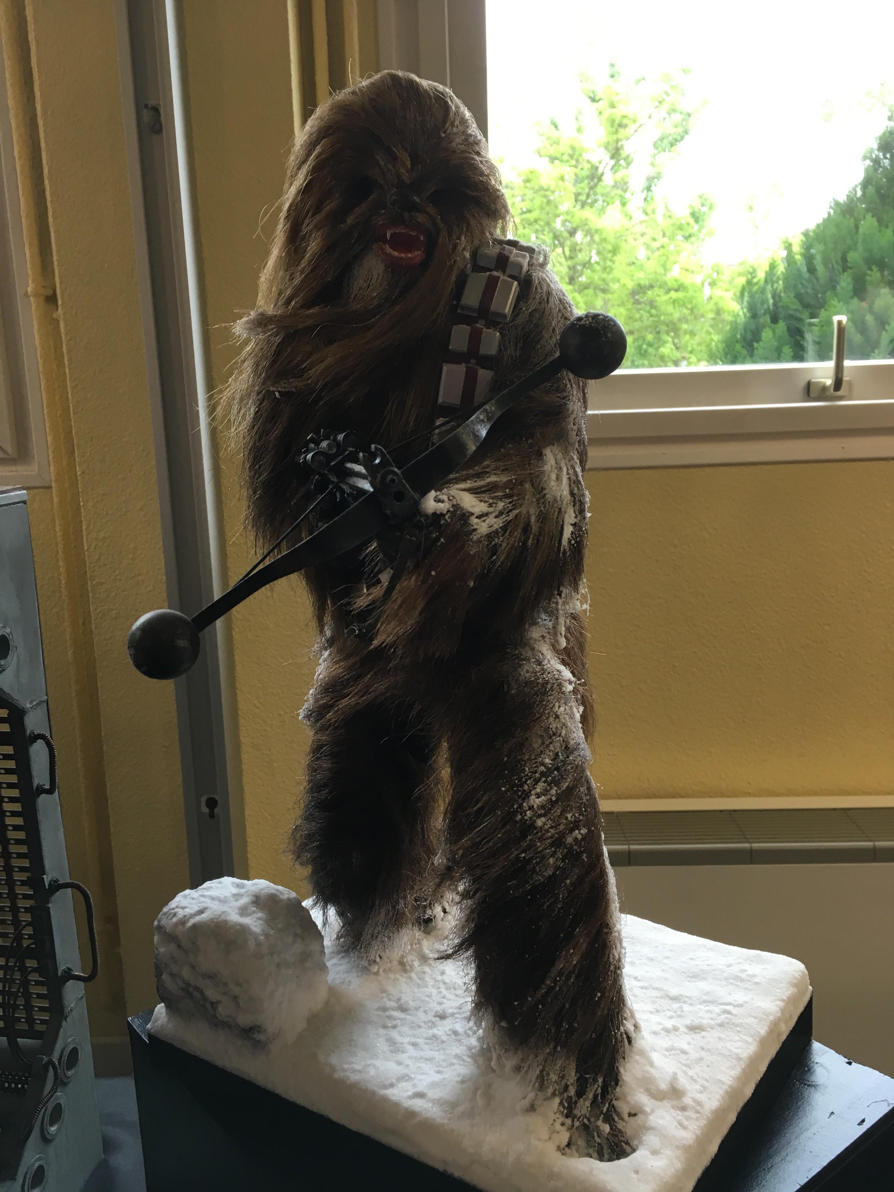 Générations Star Wars et SF 20ème édition - Cusset - 28 et 29 avril 2018 B538DS