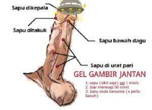Gel Gambir Jantan Gel - www.BATINMALAYSIA.com LEEk8y