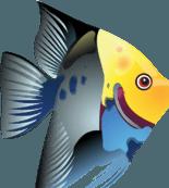 Aquarium-Ardennes