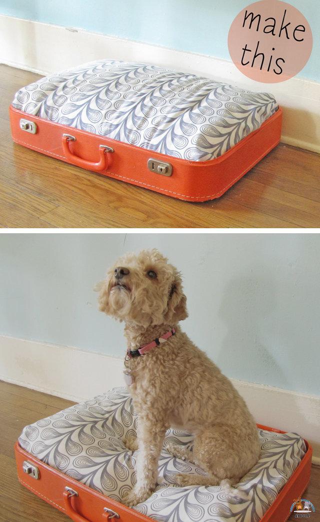 DIY couchage chien