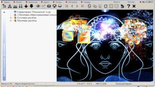 Новейшая теория искусственного интеллекта на основе IT-самоорганизации (часть 2)