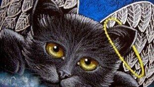 Trauer - der geliebte Hund ist gestorben, die Katze tot.. der Schmerz ist groß