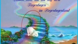 Tanz auf dem Regenbogen im Tier Regenbogenland by Gisela Mielke