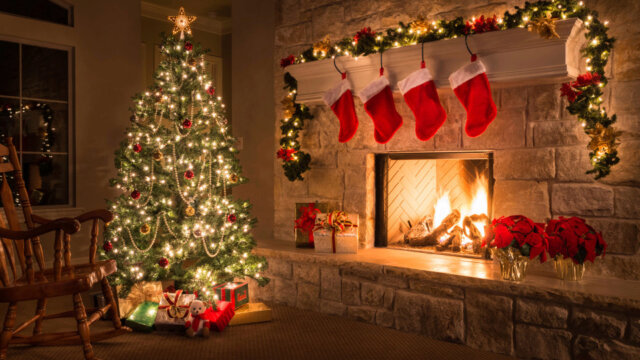 The History of Christmas Trees