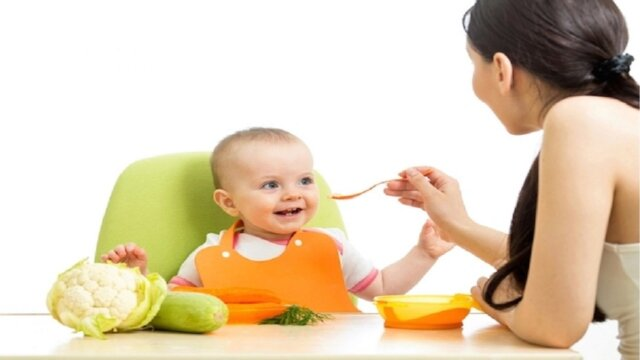 Novos alimentos ao bebê