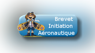 BIA : Brevet d'Initiation Aéronautique