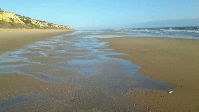 Como Leer la playa