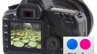 Utiliser Flickr pour mettre des photos sur le forum