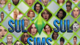 Regras da SulSul Sims