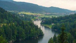 Bien pêcher la carpe en rivière ( 1/ les différentes zones )