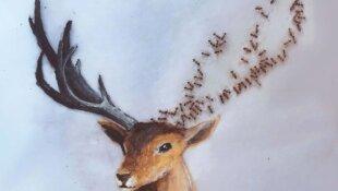 Lantha Naiker fait de l'art avec des fourmis