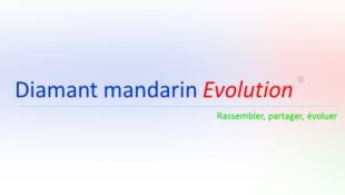 Diamant mandarin Evolution, forum de discussion et d'entraide